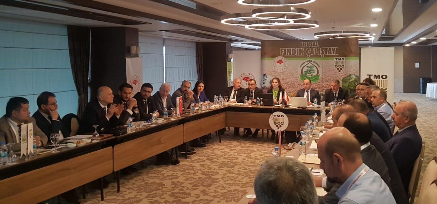STB Başkanı Adem Sarı Ulusal Fındık Çalıştayına Katıldı